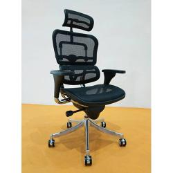 DELUXE EXECUTIVE OFFICE MESH CHAIR WITH HEAD REST LEATHER DEL 213