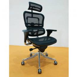 Deluxe Executive Mesh Chair DEL 152