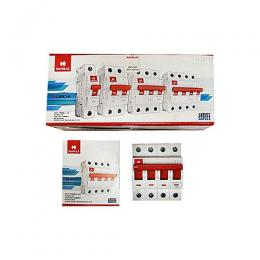 Havells India -Miniature Circuit Breaker (MCBs) 63 Amps(n)