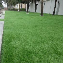 HOUSEHOLD TURF 003