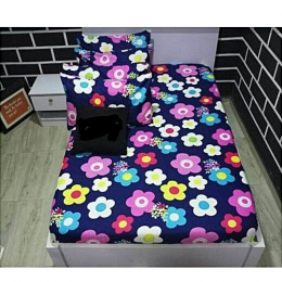 BedsheetHub 6 By 6 Bedsheet 2 Pillow Case