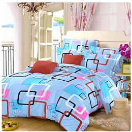 BedsheetHub Bedsheet With 4pillow Case