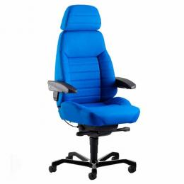 Ergonomic Executive Chair (ACS)