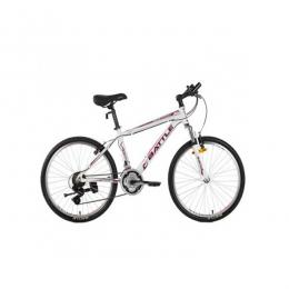 Gategold S24 Outdoor Bike