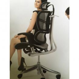 Executive Ergonomic Chair IQ Model