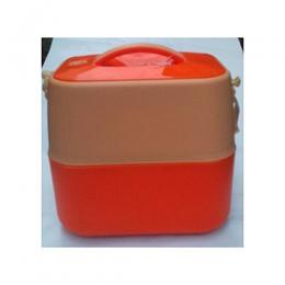 Ultimate Ash Insulated Picnic School Lunch Box