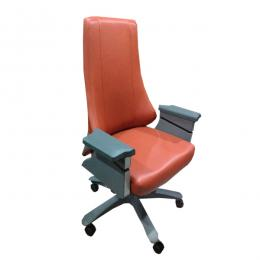 Office Chair DL16