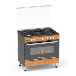 Polystar 5 Gas Burner with Auto Ignition|PVWD-960G5G