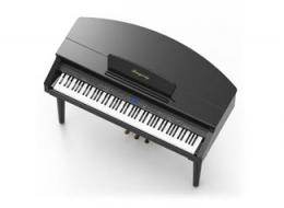 RingwayY Grand Digital Piano -- MGP150