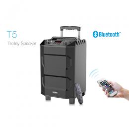F&D T5 Trolley Wireless 33W CORD,L.MIKE, Built In Battery Portable Bluetooth Speaker